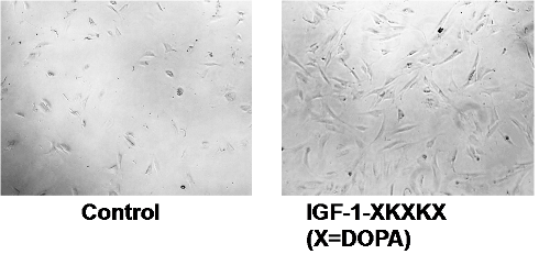 Photos showing enhanced cell growth with treatment