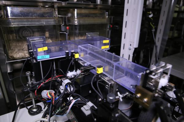 Image of the experimental setup