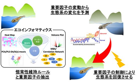 エコインフォマティクスによる生態系変化予測とその応用の図