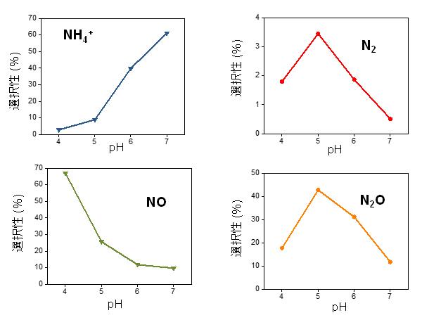 人工の脱窒触媒を用いた亜硝酸イオンの無害化反応の図