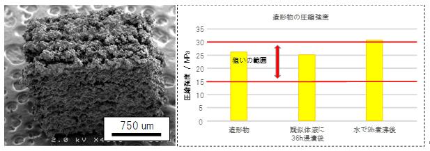 3次元積層造形物の走査型電子顕微鏡写真と圧縮強度の図