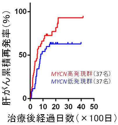 MYCN遺伝子の発現量と肝がん再発率の関係の図