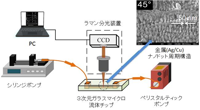 3次元マイクロ流体SERSセンサーによる微量有害物質のリアルタイム検出の図