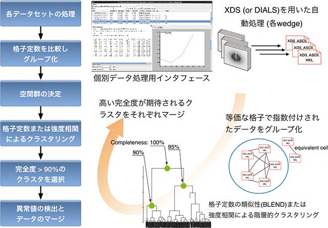 KAMOを用いたデータ処理の流れの図