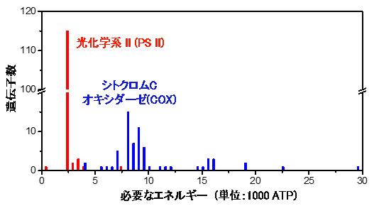 PS IIおよびCOXの遺伝子数と修復に必要なエネルギーの関係の図