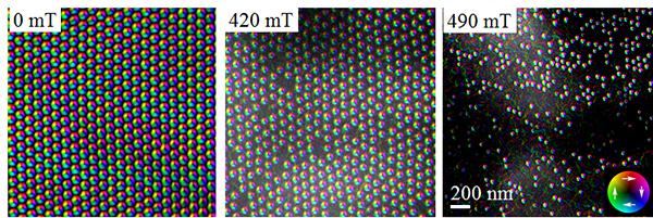 ローレンツ電子顕微鏡法で観察された各磁場のSkXと孤立スキルミオンの図