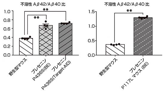 変異プレセニリンマウス(P436SとP117)におけるAβ産生パターンの図