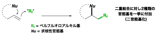 二官能基化型のペルフルオロアルキル化反応の図