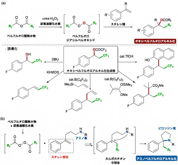 新たに開発したスチレン類の二官能基化型のペルフルオロアルキル化反応の図