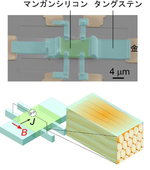 測定に用いた試料の電子顕微鏡像とスキルミオン弦の配置の模式図の画像