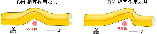 スキルミオン弦の変形の模式図の画像