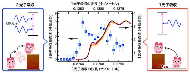 X線の2光子吸収スペクトルと1光子吸収スペクトルの違いの図