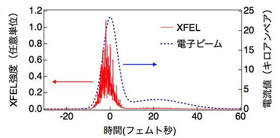 SACLAの通常運転で放射されるXFELの時間プロファイルをシミュレーションした結果の図