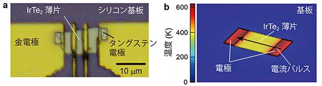 実験手法の概略の図