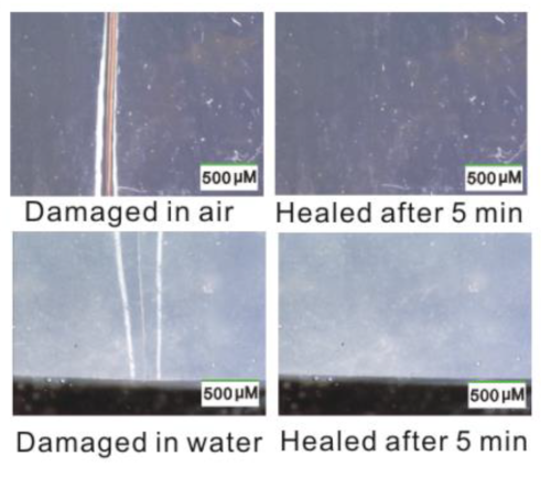 Photos of a self-healing material reattaching itself