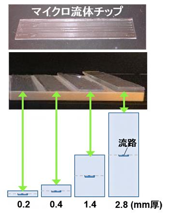 本研究で作製した厚さの異なるガラス製マイクロ流体チップの図