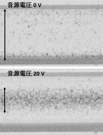 大腸菌に対して音響絞り込みを行ったときの写真の図
