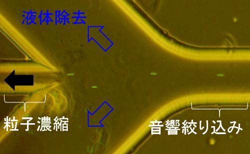 微粒子濃縮の様子の図