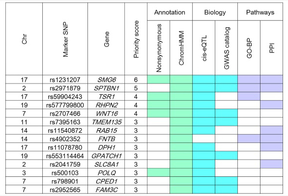 統合インフォマティクス解析により同定された剛性指数の候補遺伝子の図