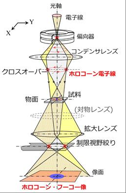 ホロコーン・フーコー法の光学系の概要の図