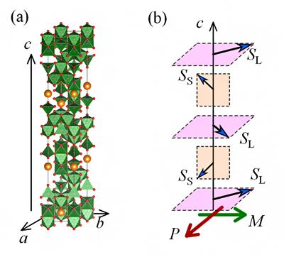 六方晶鉄酸化物の結晶構造(a)とFE3相の磁気構造(b)の模式図の画像