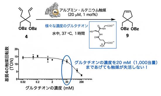 グルタチオン存在下でのアルブミン・ルテニウム触媒の閉環メタセシス反応の図