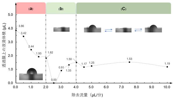 長期SCN組織培養に適した培養液流量の検証の図