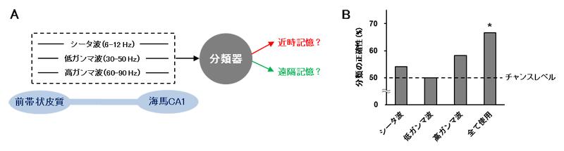 機械学習による近時記憶と遠隔記憶の分類の図