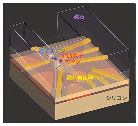 本研究で設計した試料の構造の図