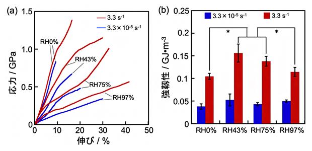 クモ糸の力学的性質の伸長速度と湿度依存性の図