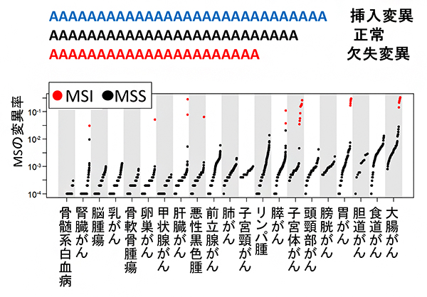 21のがん腫ごとの全ゲノムレベルでのマイクロサテライト(MS)の変異率の図