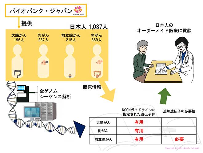 オーダーメイド医療の実現に貢献の図