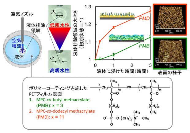 空気噴射液体排除法によるポリマーコーティングの水和挙動評価の図