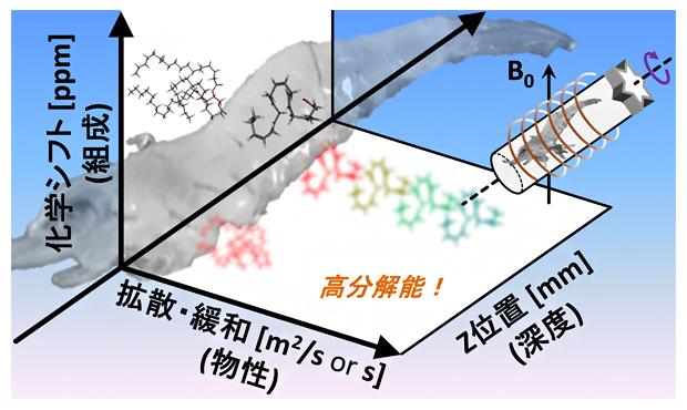 生物個体中成分の組成・物性・位置(深度)を高分解能で非破壊計測するの図