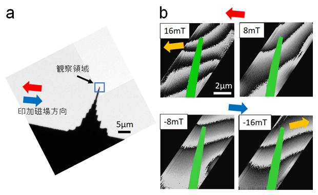 集束イオンビーム加工された雲母の針状試料画像(a)と外部磁場下の位相再生像(b)の図
