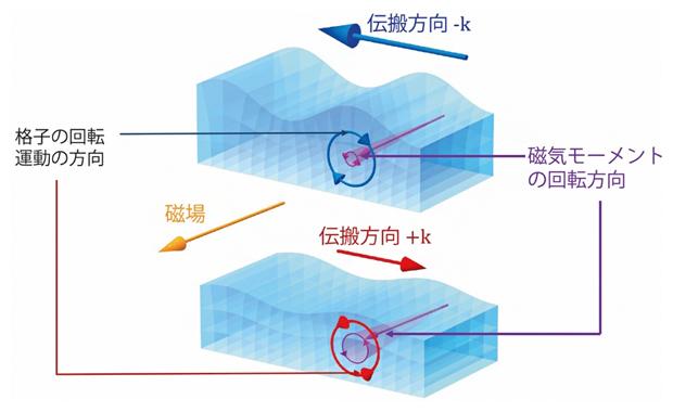 磁気と回転の結合によるレイリー波の整流の図