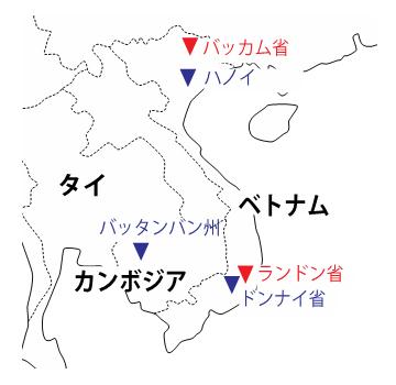 キャッサバの開花調査の圃場の図