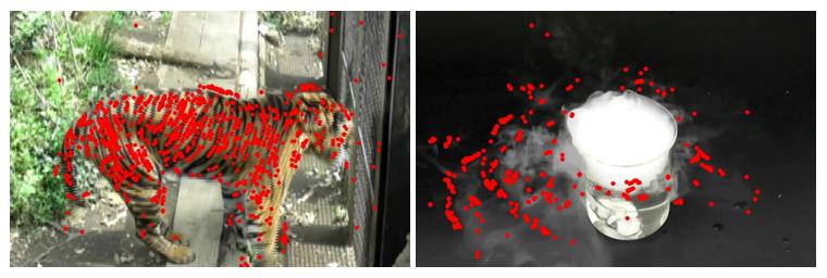 開発したアルゴリズムにより、動画から抽出した対象物の動きの可視化の図