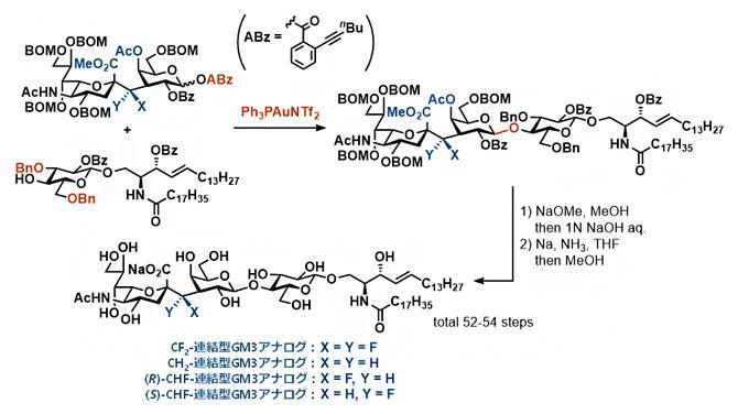 4種の炭素連結型GM3アナログの合成の図