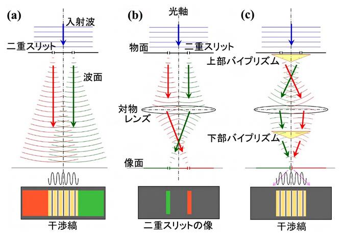 二重スリットを用いた干渉光学系の図