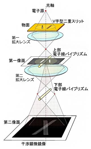 伝搬距離ゼロでの二重スリットによる電子波干渉実験の光学系の図