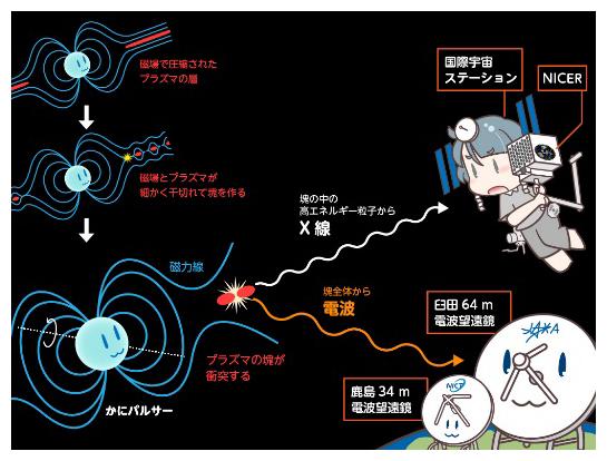 「かにパルサー」の巨大電波パルスに同期したX線増光の発見の図