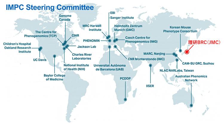国際マウス表現型解析コンソーシアム(IMPC)の図