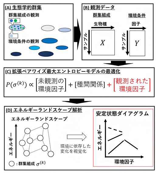 本研究で開発した手法の概要の図