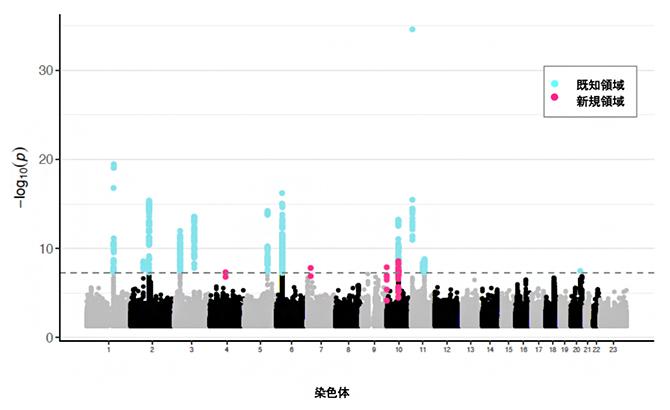日本人のアトピー性皮膚炎GWASのマンハッタンプロットの図