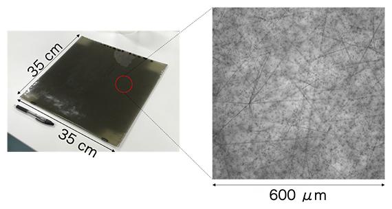 実験で使用した写真乾板(左)と光学顕微鏡で撮影した写真乾板の画像(右)の図