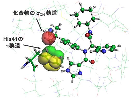 メインプロテアーゼと治療薬候補化合物がCH/π軌道相互作用を形成している様子の図